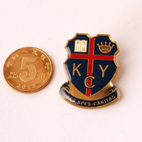 Custom Imitation Hard Enamel Lapel Pins-Cloisonne Lapel Pin