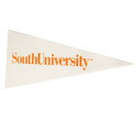 "Custom Dyed Sublimation Felt Pennants University Sport Flags-9""x24"""